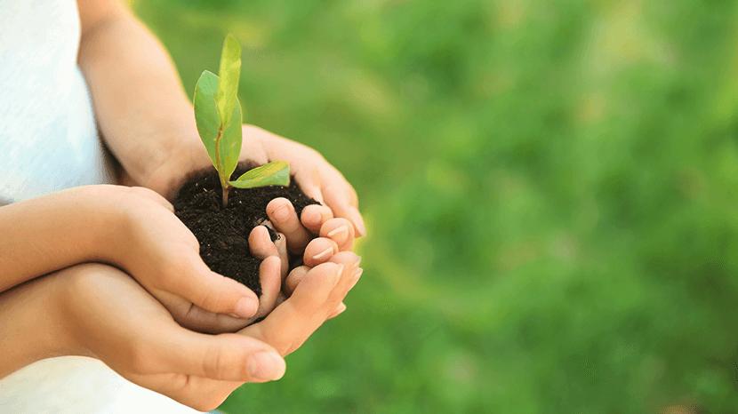 緑を守る親子の手