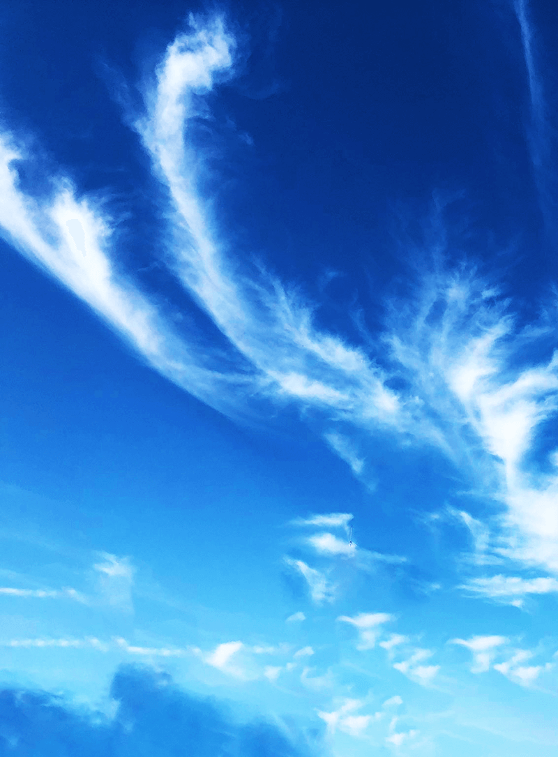不死鳥の形をした雲