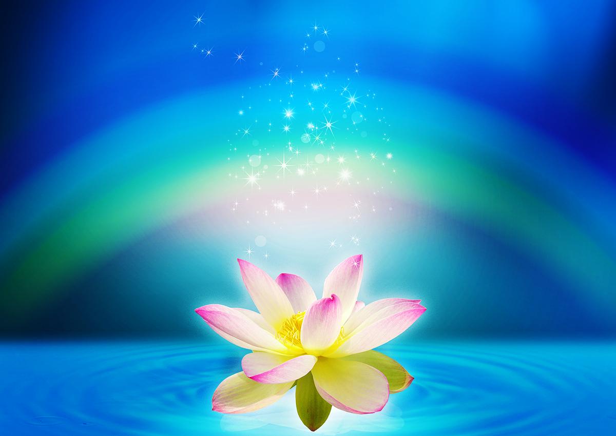 青い池に浮かぶ虹と蓮