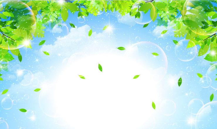 青空囲む葉とシャボン玉