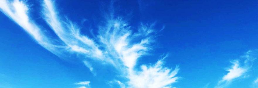 青空に浮かぶ羽の形をした雲