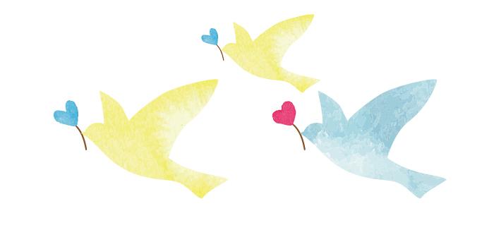 親子3羽で飛んでいる鳩