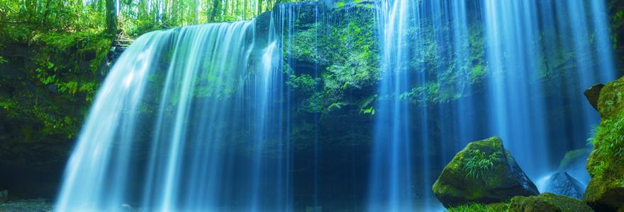 森を流れる清い滝