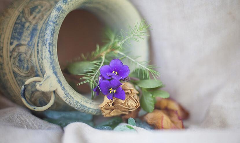 ツボと紫色の花