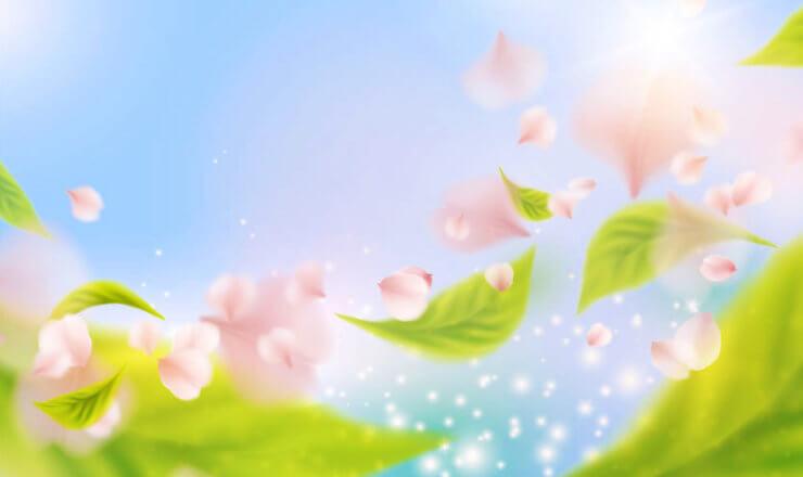 舞う桜の花と光